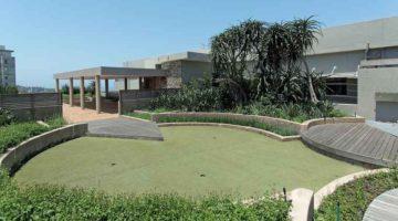 Berea rooftop garden