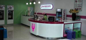 Wakaberry at Mall of the North